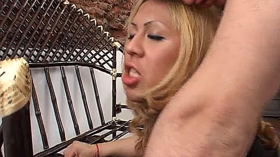 Reality-Könige Porno-Röhren